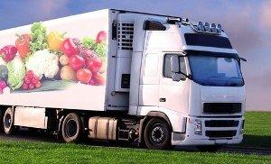 Как правильно подобрать транспорт для перевозки скоропортящихся товаров