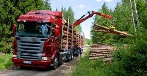 автоперевозка леса