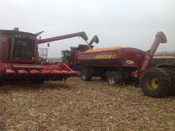 Загрузка зерна с комбайна на грузовой транспорт