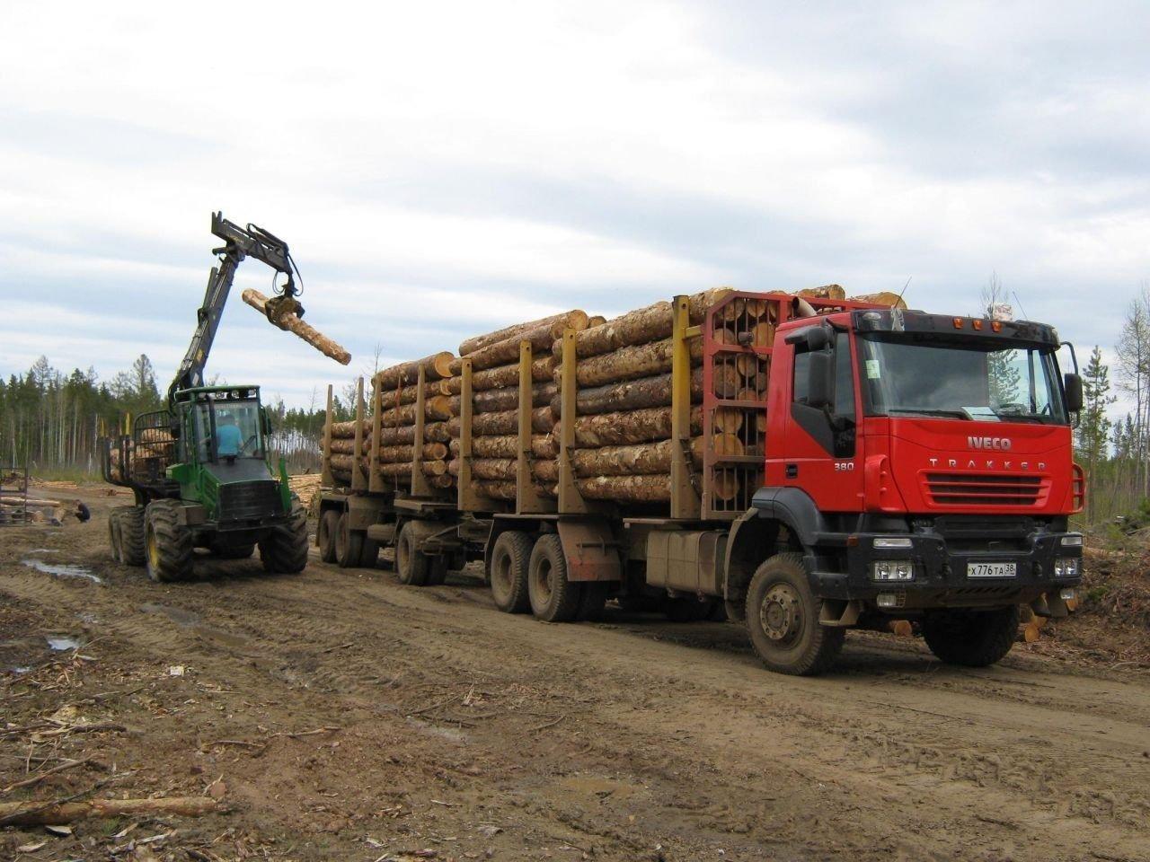 Размещение и крепление круглого леса
