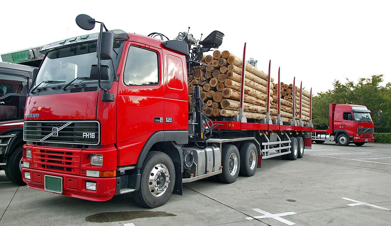 Характеристика, способы хранения и перевозка лесоматериалов