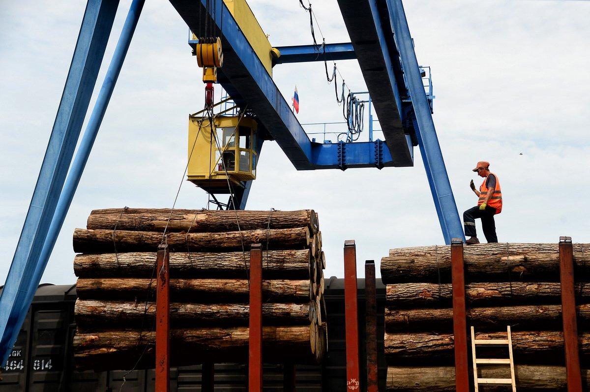 Условия перевозок лесоматериалов железнодорожным транспортом